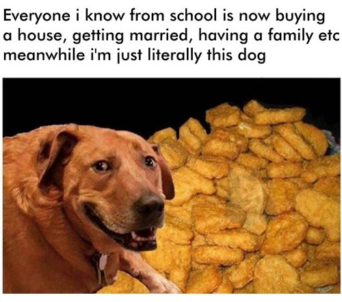 Chicken nugget meme dog